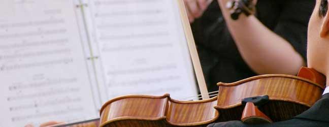 Cours de Français et Musique pour un adulte