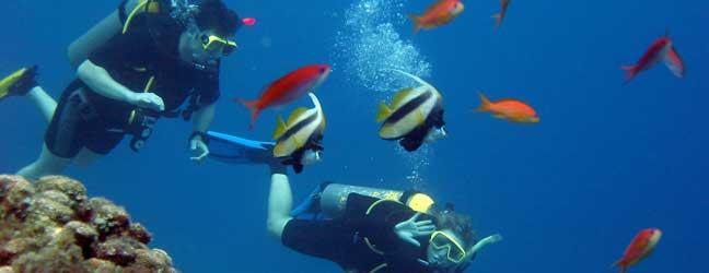 Cours de plongée en anglais
