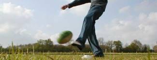 Cours d'Anglais et Sport