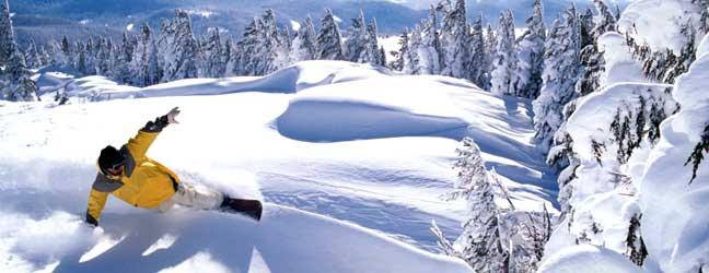 Cours d'Anglais et Snowboard pour un adulte