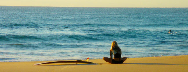 Anglais + Surf