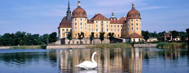 Année d'étude à l'étranger en Allemagne pour lycéen