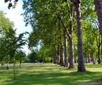1 - Programme d'été sur campus pour enfants et ados