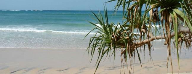 Brisbane (Région) - Immersion chez le professeur à Brisbane pour un adolescent