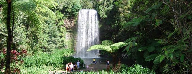 Cairns - Immersion chez le professeur à Cairns
