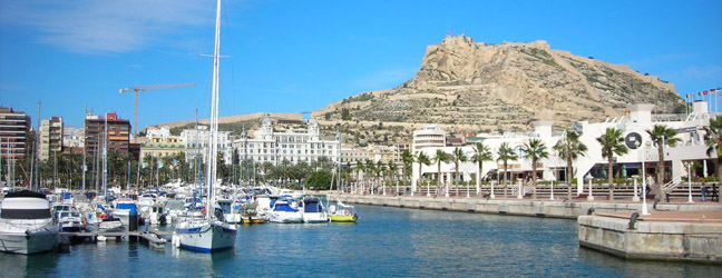 Enforex alicante avis