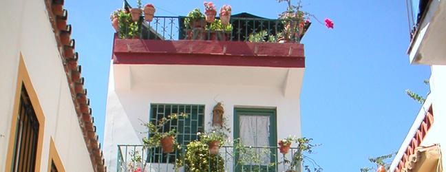 Marbella - Camp Linguistique Junior à Marbella