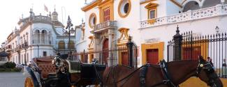 Séjour linguistique en Espagne pour un adulte Séville