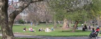 Programmes sur campus aux Etats-Unis pour un étudiant Boston