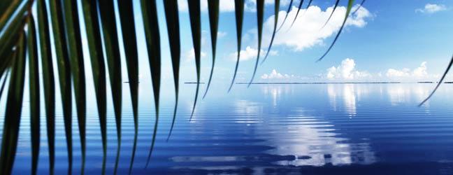 Hawaï - Immersion chez le professeur à Hawaï pour un adolescent