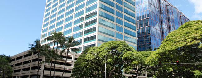 ICC HAWAII pour professionnel (Honolulu aux Etats-Unis)