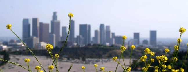 Los Angeles - Séjour linguistique à Los Angeles