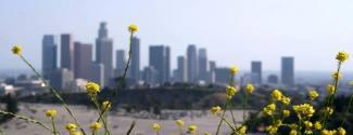 Séjour linguistique aux Etats-Unis pour un enfant Los Angeles