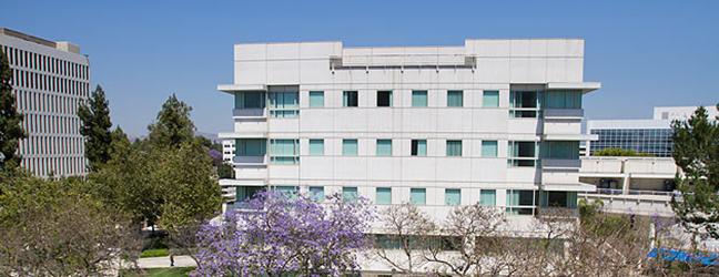 Programme d'été sur campus pour adolescents (Los Angeles aux Etats-Unis)