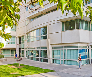 Séjour linguistique Los Angeles California State University – Fullerton (CSUF) - Los Angeles