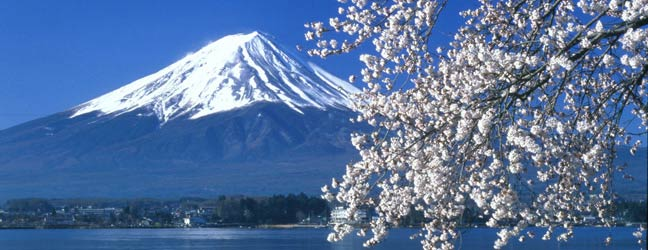 """Cours individuels - """"One-to-One"""" au Japon pour adulte"""