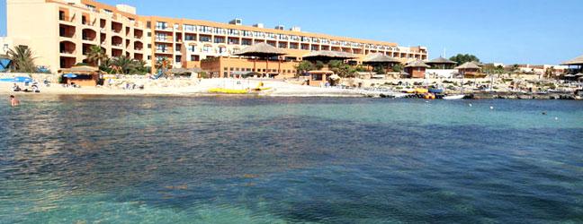 Cours chez le professeur + activités générales à Malte pour adulte