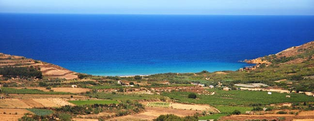 Cours individuels chez le professeur - langue des affaires à Malte pour lycéen