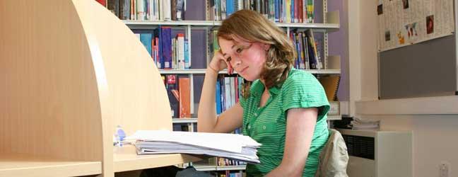 Ecole de langue - Russe pour un étudiant